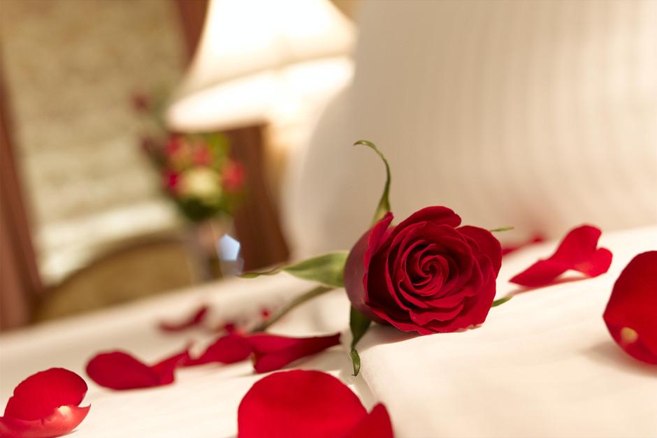 Valentine's Day Hotel Take Over 2017
