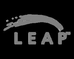 leap image