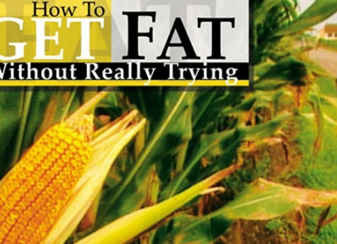 How to Get Fat Without Really Trying