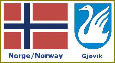 Norge-Gjøvik pins design