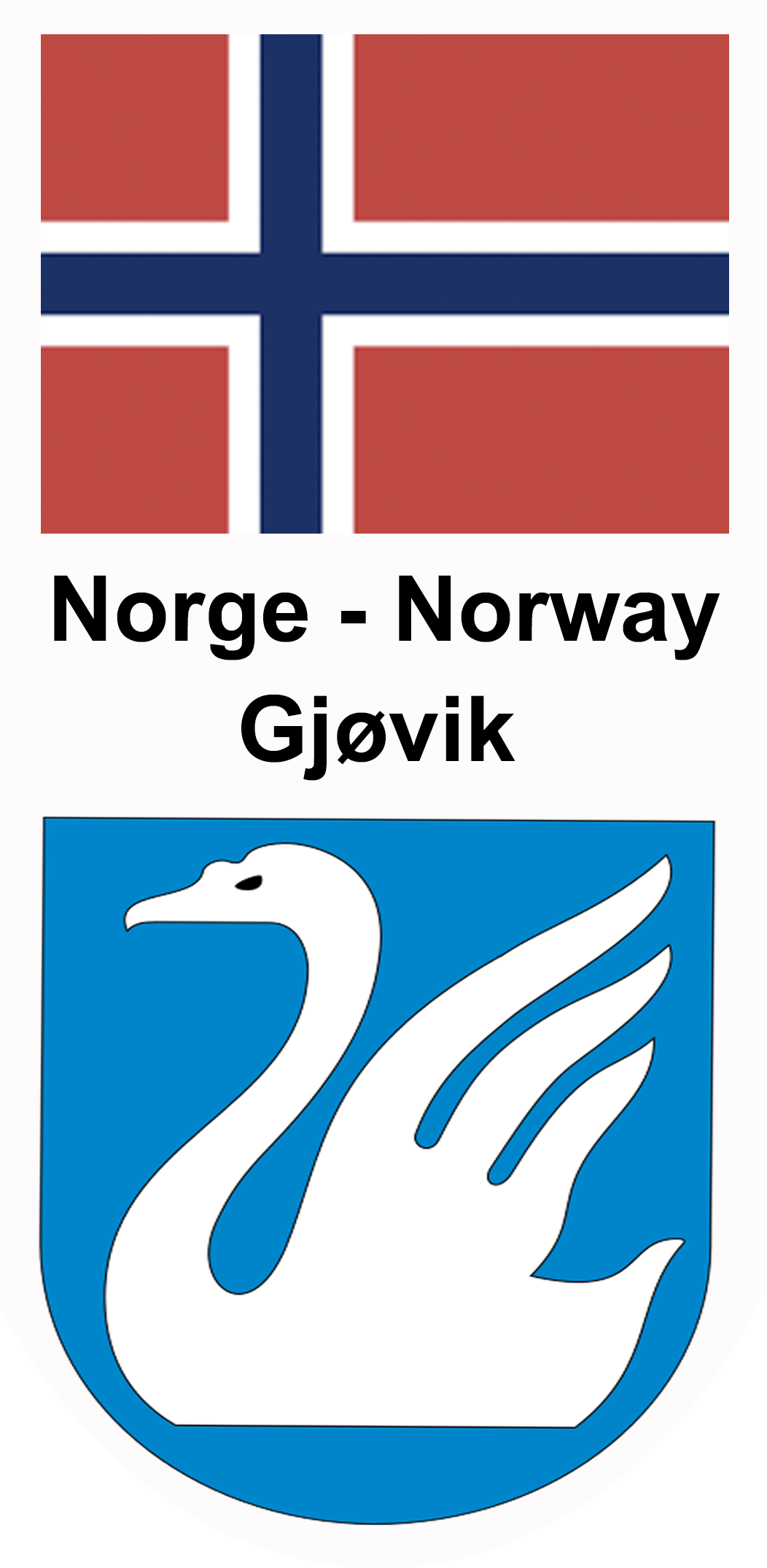 Norge/ Gjøvik pins design