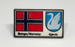 Gjøvikpins
