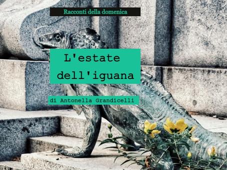 L'estate dell'iguana