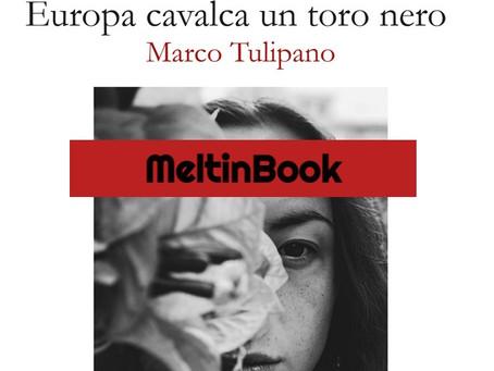 """""""Europa cavalca un toro nero"""" di Marco Tulipano"""