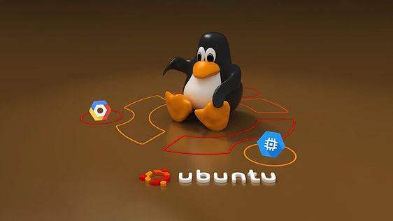 ubuntu_server_2.jpg