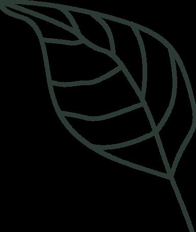 Leaf_dark.png