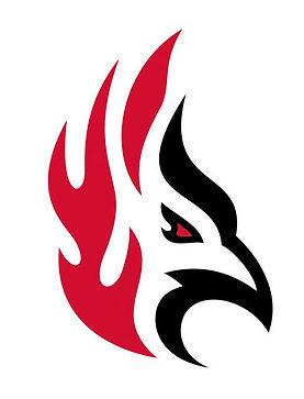 30577_Firebird-images-head.jpg