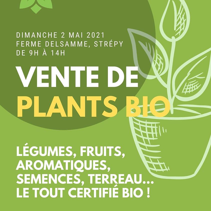 Vente de plants bio