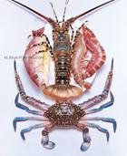 Sea food platter.jpg