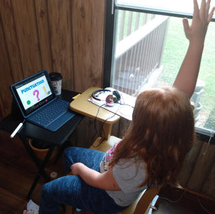 On-line remote learning