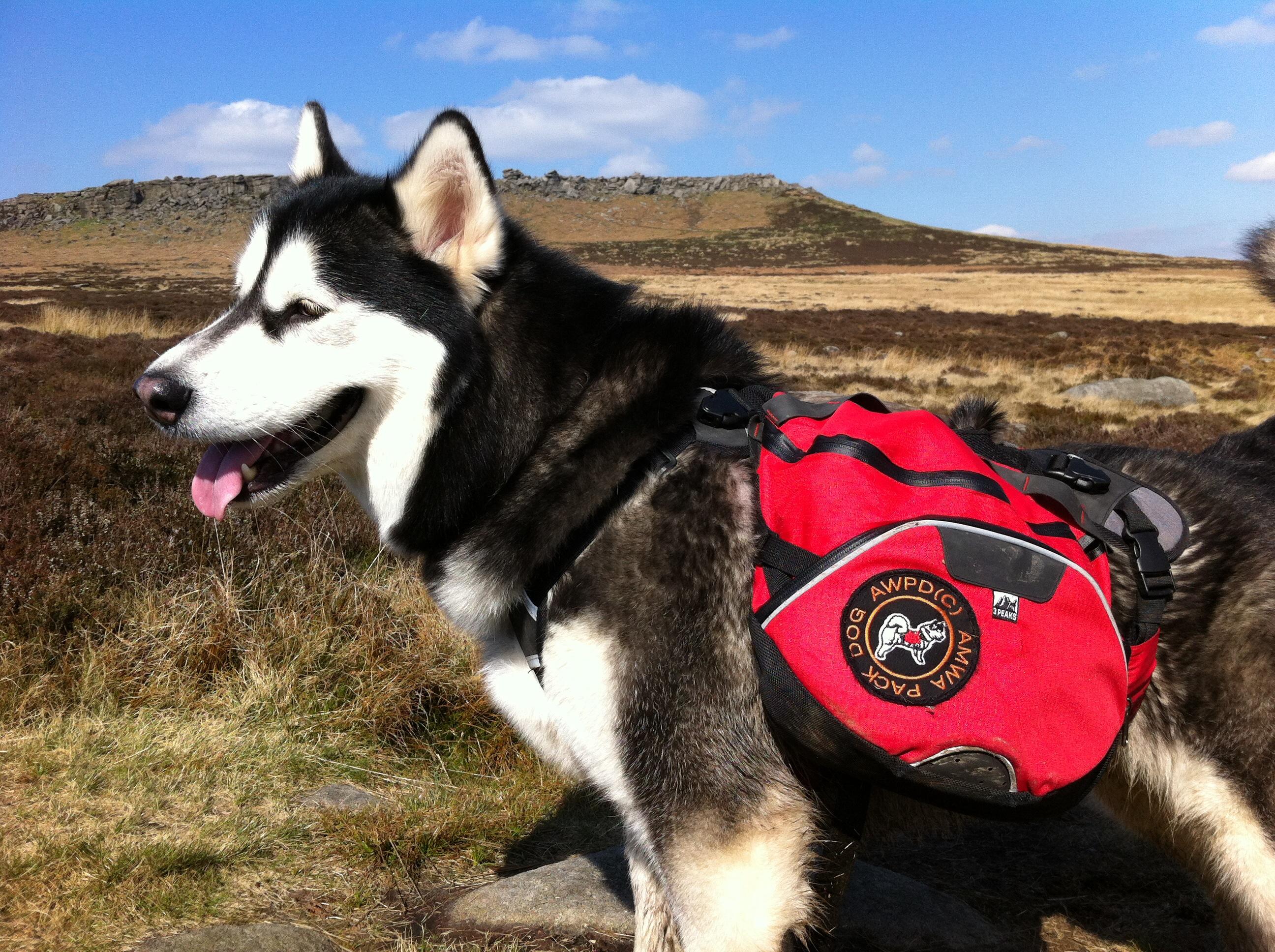 Jeger Backpacking