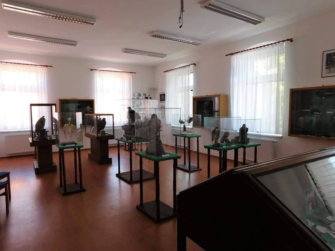 Sokolnické muzeum