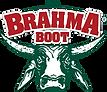 brahma4.png