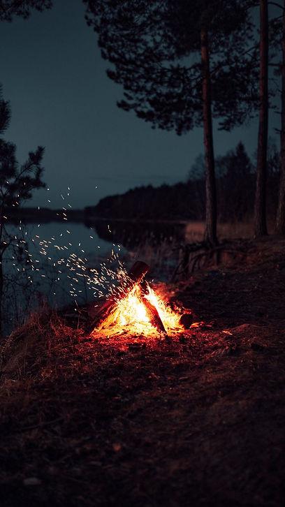 bonfire_sparks_night_166562_938x1668.jpg