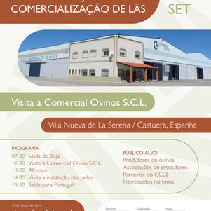 Workshop: Transformação e Comercialização de Lãs