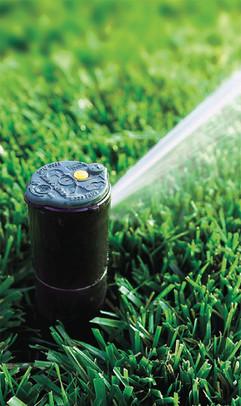 irrigation-05.jpg