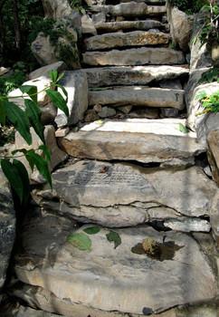 steps-16.jpg