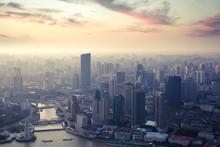 שנת התרנגול בסין התחילה – האם אתם מוכנים לפערים הבין תרבותיים בעבודה עם הסינים?!