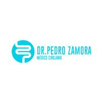 Dr. Pedro Zamora