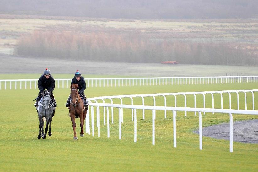 Horse Racing 1.jpg