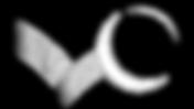 Bouncing Moon Logo.png
