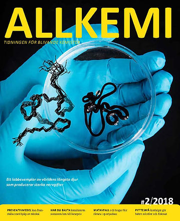 Allkemi_2_2018_Page_01.jpg