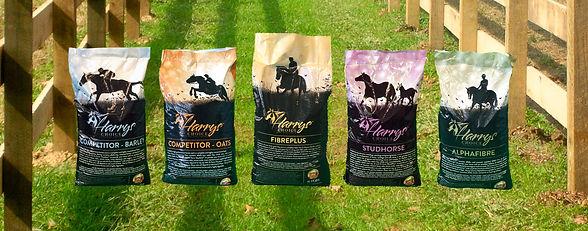 bags on grass.jpg