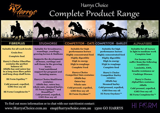 Brief overview of the 5 products