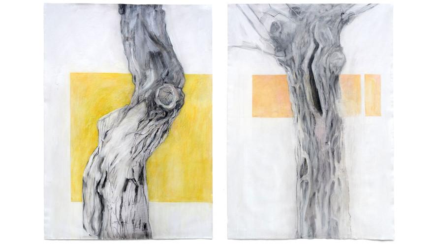 díptico árboles