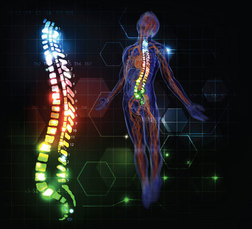 NSA Chiropractic - The Quick and Easy Low Down! ( FAQ's)