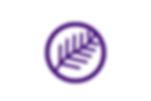 purple large.png