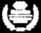 az_scottsdale_web-design_2020_inverse.pn