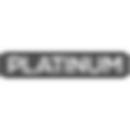 Platinum Builders Logo.png