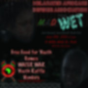 MADWET Flyer.jpg