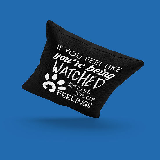 Trust Your Feelings Pillow
