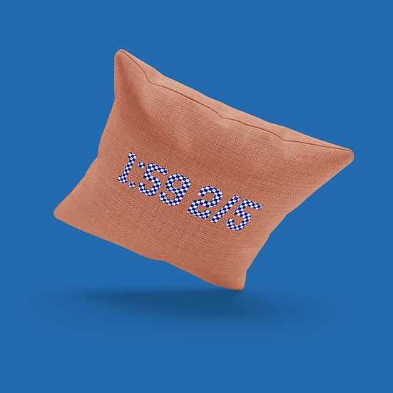 Secretariat Pillow
