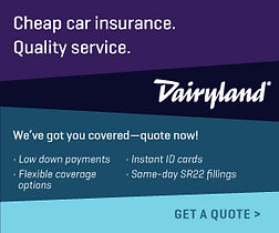 Dairyland Small banner home page.jpg