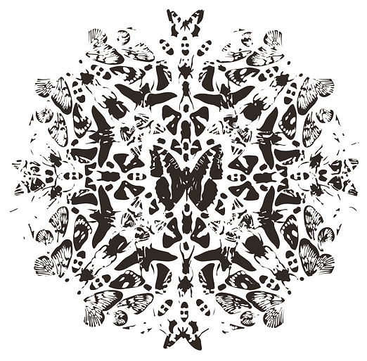 Butterfly Pattern copy.png