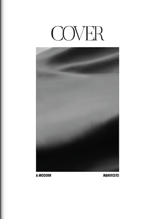 fake cover.png