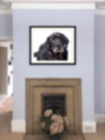 Ivor  the blacLabrador's Frame  Wall Image Proof