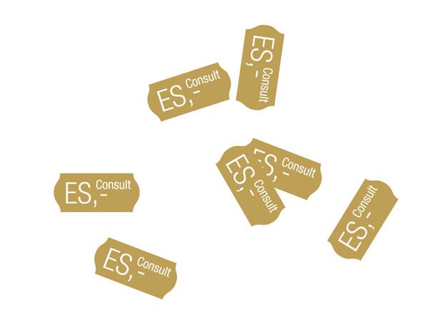Logo ES Consult