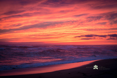 Winter Sunset, Edgartown