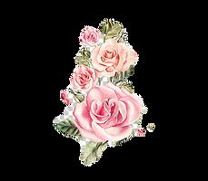 rose-portable-network-graphics-flower-bo
