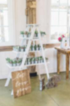 Ottawa Wedding Photography Reception Decor Wedding favours Succulents