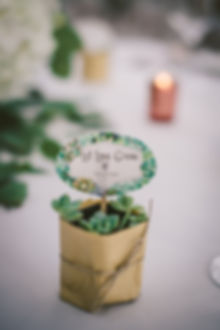 Ottawa Wedding Photography Reception Favour Succulents