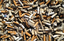 180824-oregon-cigarette-cleanup-al-1646_