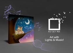 Fly-Sky-Pix_Night-03