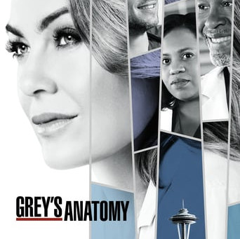 Grey's Anatomy 2005 : Episode 15 x 23