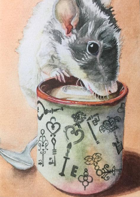 Thirsty ratsy