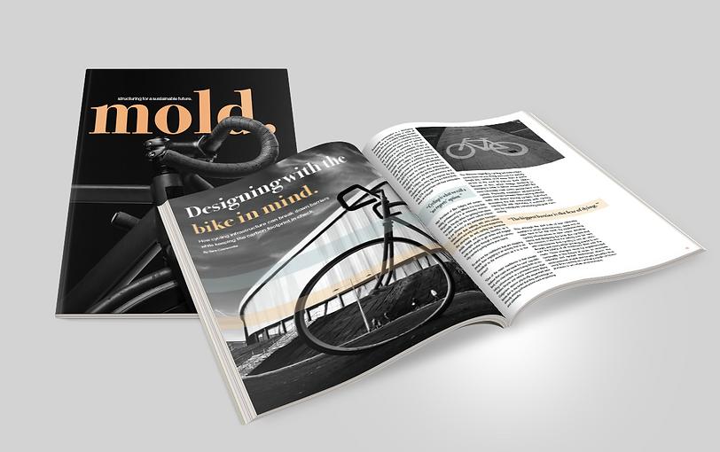 mold magazine mockup.png